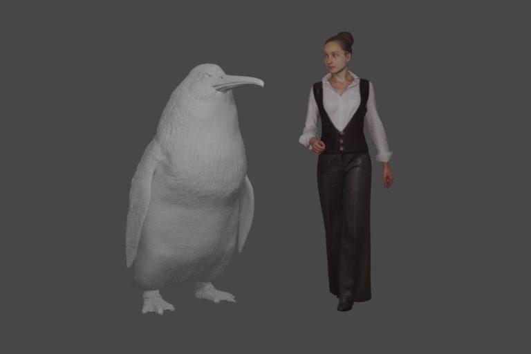 La especie extinta de pingüino gigante Crossvallia waiparensis habría sido casi tan alta como un humano adulto promedio. Imagen cortesía del Museo de Canterbury