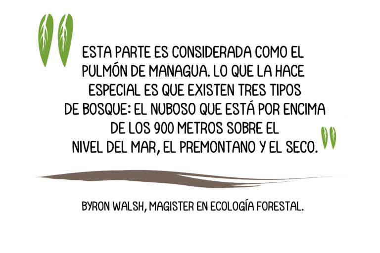 https://imgs.mongabay.com/wp-content/uploads/sites/25/2019/10/18175042/Nicaragua-1-768x512.jpg