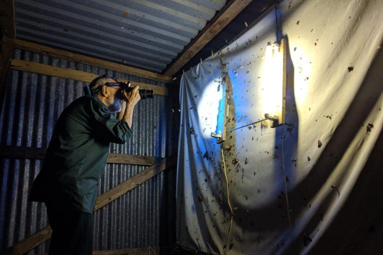 Conservación en Costa Rica. El ecólogo Daniel Janzen documenta las mariposas nocturnas más interesantes que llegan a la trampa de luz en el Parque Nacional Santa Rosa, ubicado en el Pacífico de Costa Rica. Foto: Diego Arguedas Ortiz.