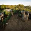 Conservación en Nicaragua. Un caserío de la comunidad Santa Julia, ubicada en medio del bosque de El Crucero. Foto: Isidro Hernández.