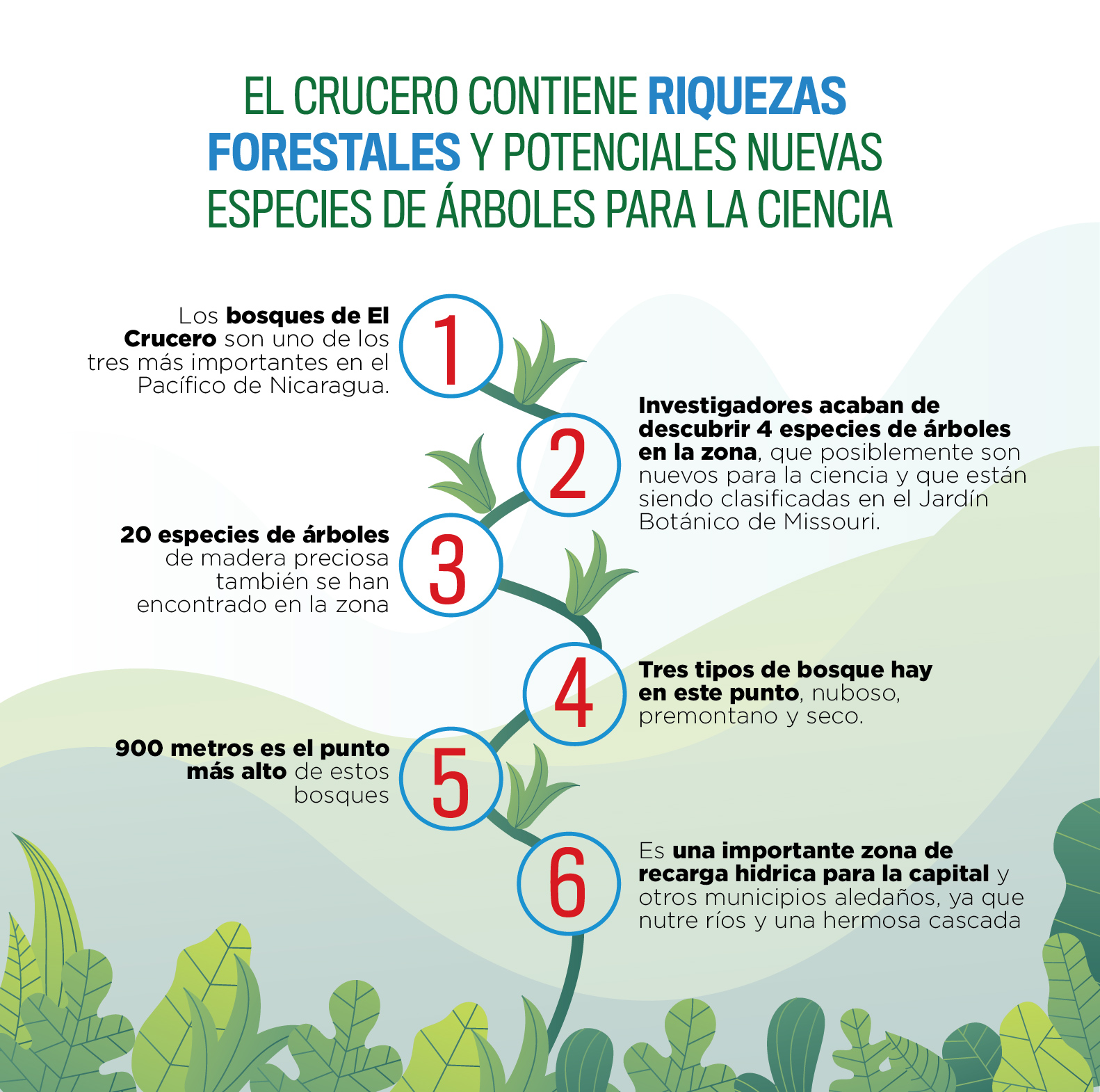 https://imgs.mongabay.com/wp-content/uploads/sites/25/2019/10/19012142/Infografia.jpg