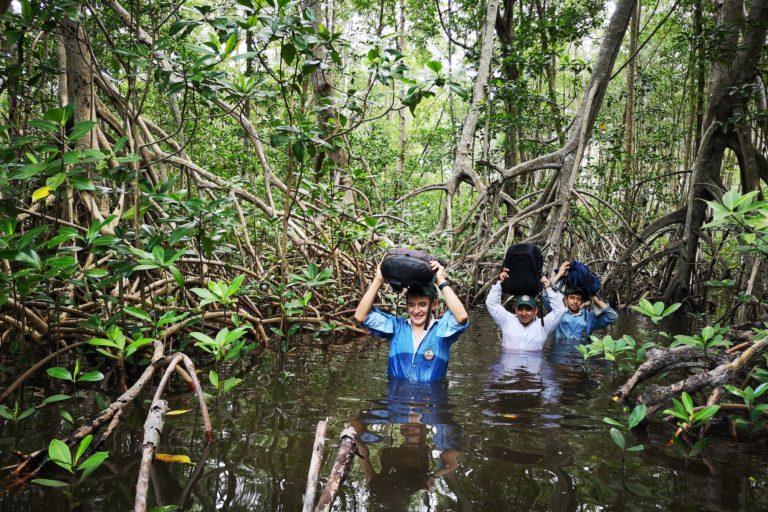 Conservación en Guatemala. Jóvenes de la Escuela Técnica de Formación Forestal del departamento de Huehuetenango viajan a la costa sur para participar en las evaluaciones de las parcelas permanentes de medición forestal. Foto: César J. Zacarías-Coxic /INAB.