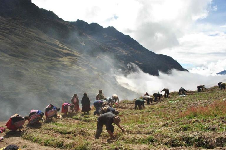 Más de 6000 hectáreas de Cuyocuyo han sido declaradas como zona agrobiodiversa. Foto: WCS.