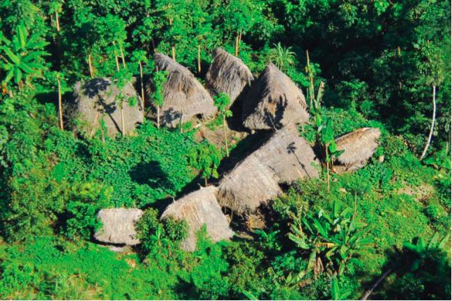 Los pueblos en aislamiento están expuesto a actividades ilegales. Foto: FUNAI.