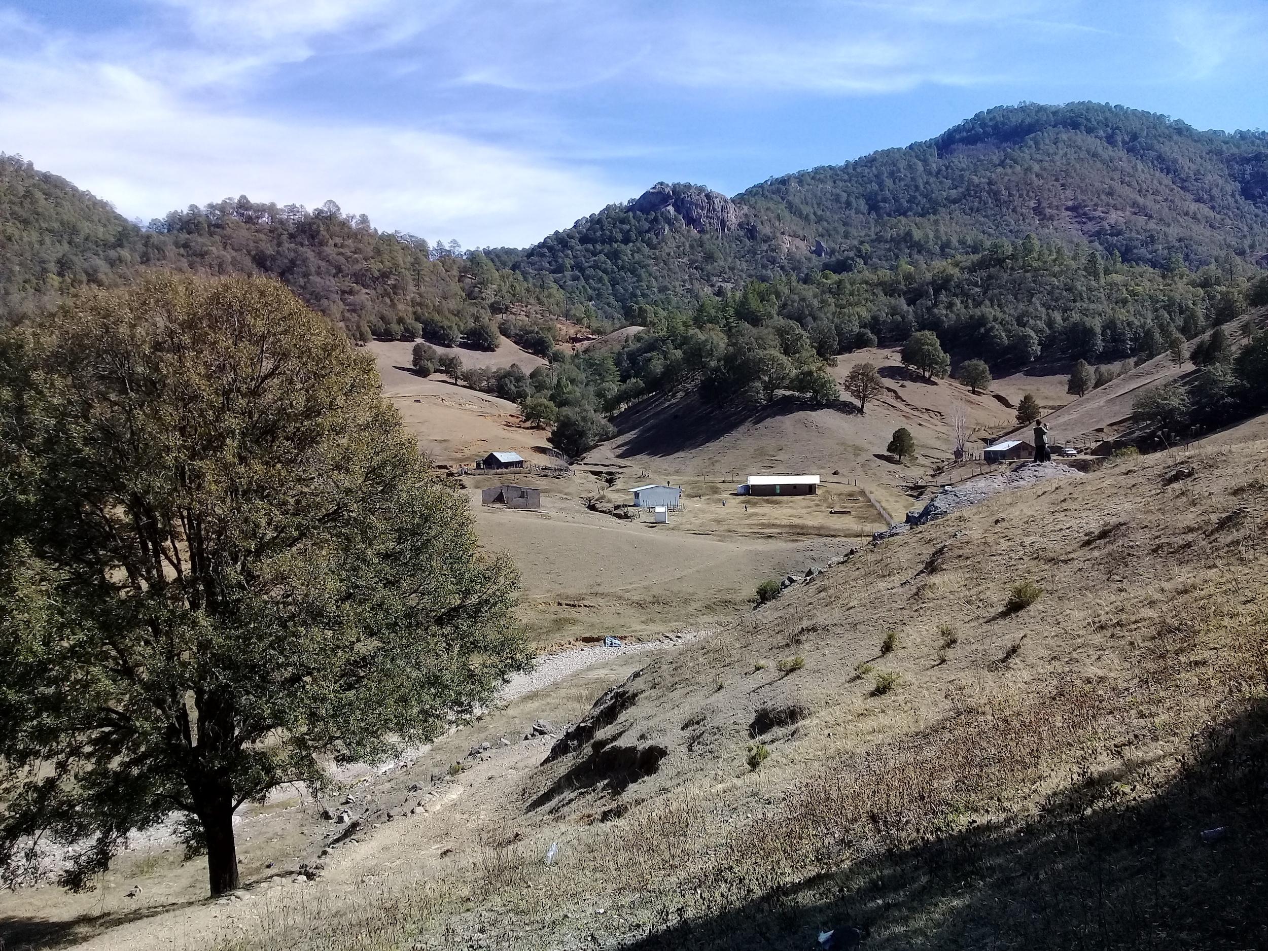 Defensores ambientales México. Los habitantes de Coloradas de la Virgen se oponen al aprovechamiento forestal a gran escala en su territorio. Foto: Alianza Sierra Madre.