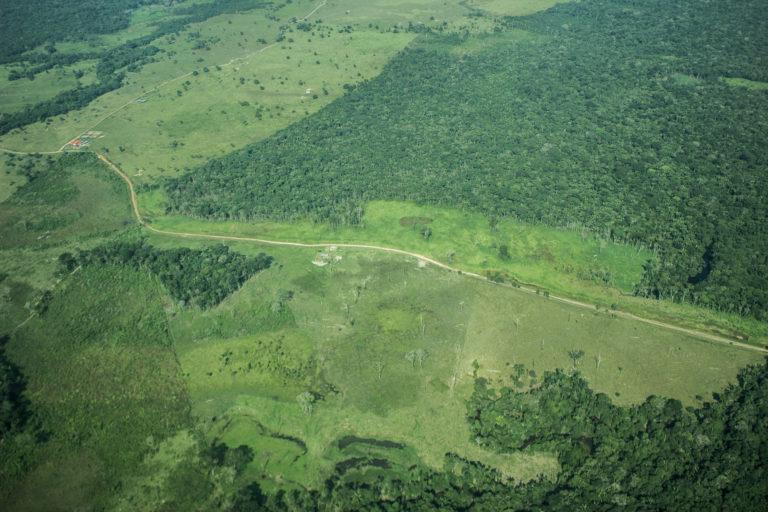 La trocha ganadera conecta el municipio de Vista Hermosa con el de La Macarena y atraviesa toda el área protegida. Según datos de Parques Nacionales, esta fue construida entre 2001 y 2003. Crédito: María Jimena Neira Niño.