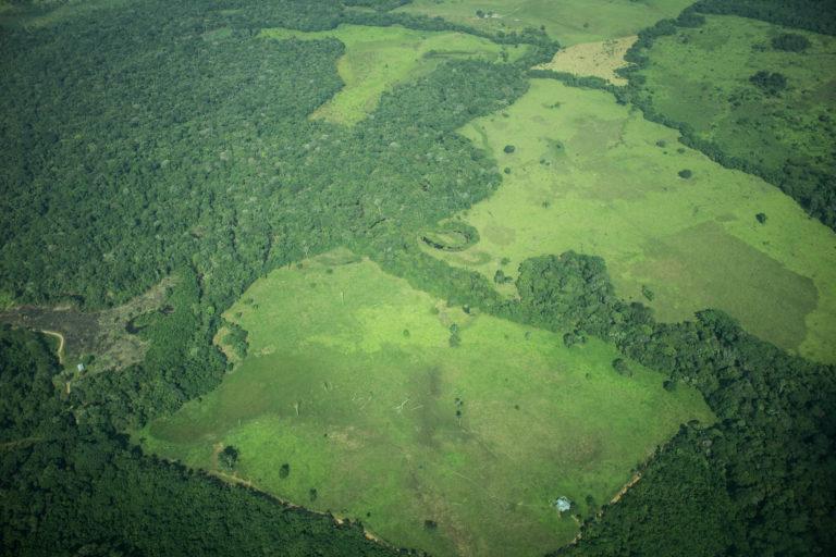 Vista aérea de predios deforestados. Entre 2017 y 2018 la deforestación en Tinigua aumentó en un 400%. Foto: María Jimena Neira Niño.