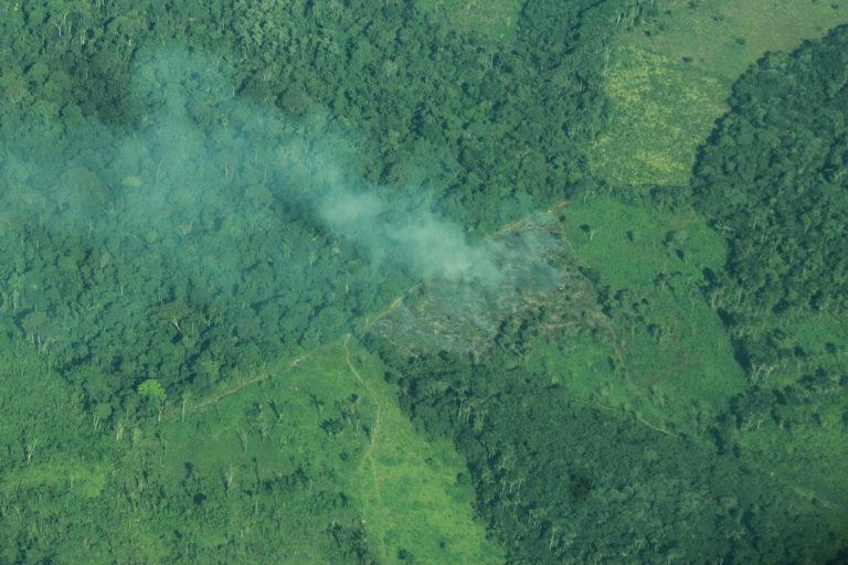Luego de talar, llega la quema en Tinigua. Foto: María Jimena Neira Niño.