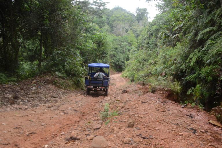 Pese al difícil acceso, el narcotráfico ha ingresado a las comunidades nativas de Ucayali. Foto: Yvette Sierra.