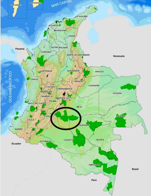 Dentro del círculo negro se muestran las áreas correspondientes a los parques Macarena, Tinigua y Picachos. Entre los tres conforman un corredor de transición entre la cordillera de los Andes, la Orinoquía y la Amazonía.