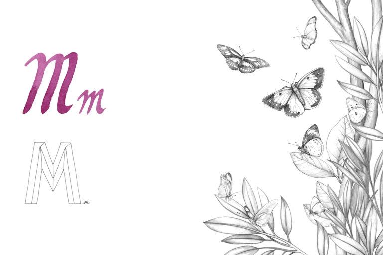 Las mariposas forman parte del abecedario de la artista plástica Sheila Alvarado. Foto: Alejandra Vélez.