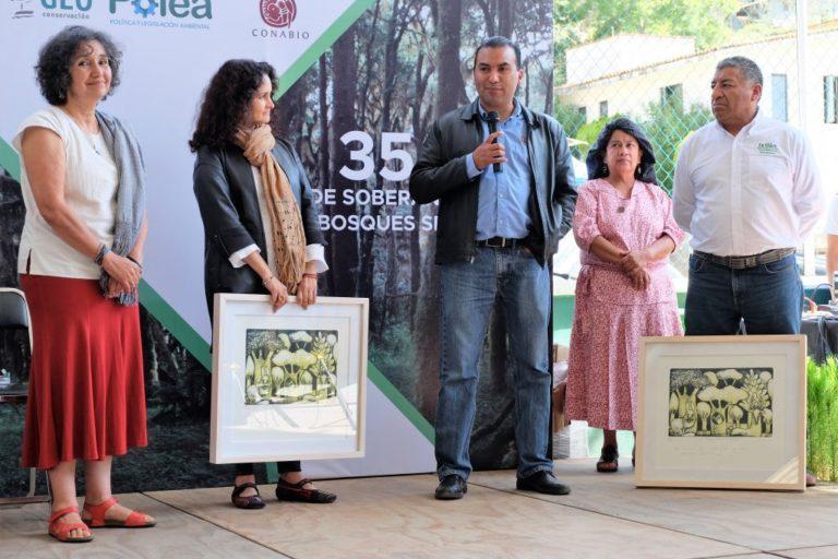Leticia Merino-Manejo forestal comunitario