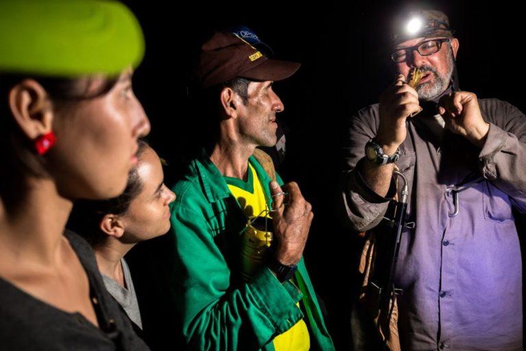 Descubrimiento nuevo anfibio. Durante dos semanas los biólogos se internaron en las zonas más remotas de los municipios de El Carmen de Chucurí, Santa Bárbara y Cimitarra. Foto: Felipe Villegas - Instituto Humboldt.
