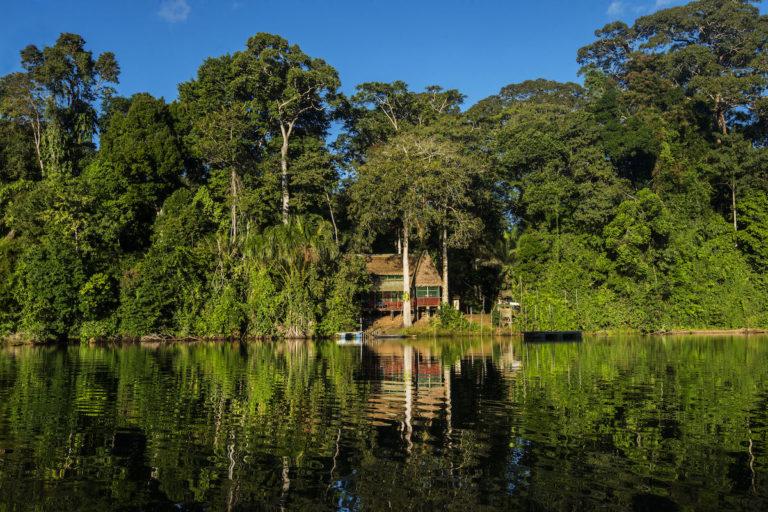 La crisis del coronavirus está dando un descanso a las áreas naturales protegidas. Foto: Gabriel Herrera / Cocha Cashu.