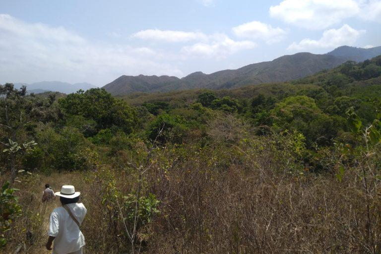 Minería Sierra Nevada. Paisaje en la Sierra Nevada de Santa Marta. Foto: Applied Biodiversity Foundation.