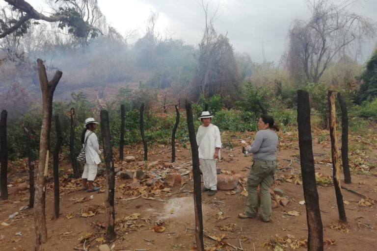 Minería Sierra Nevada. Afectaciones a la comunidad wiwa de Arimaka: restos de la quema de casa del mamo ocurrida en agosto de 2018. Foto: Applied Biodiversity Foundation.