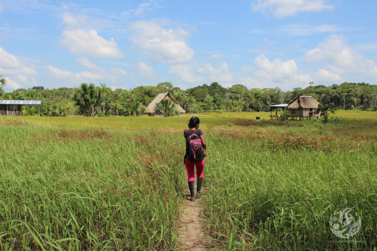 Bosques en el Caguán. Resguardo indígena en Cartagena del Chairá. Foto: cortesía FCDS.