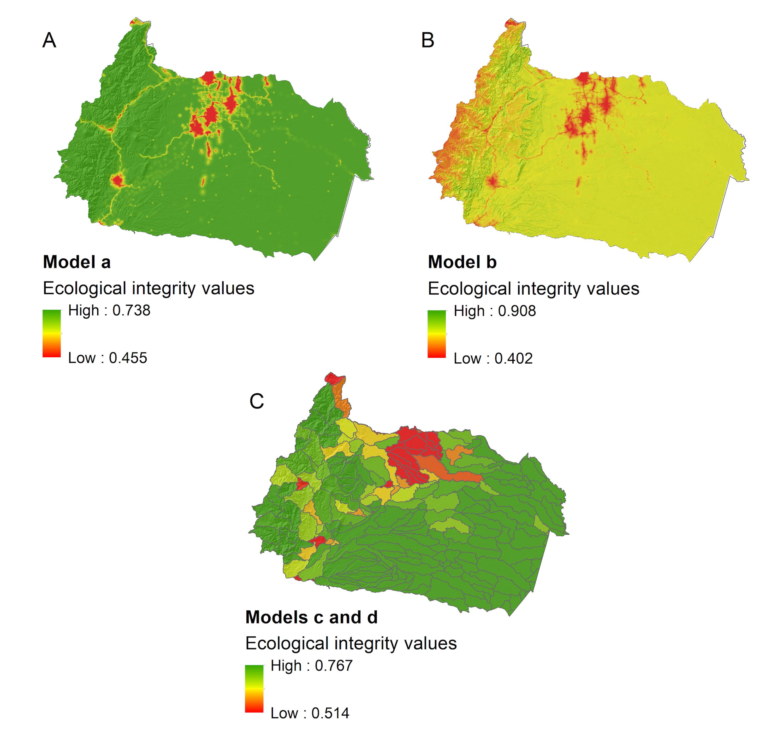 Conservación de ríos. Los mapas de integridad ecológica predecidos son el resultado de diferentes escenarios de modelado: (A) predicción de la integridad ecológica local solo a partir de variables de amenazas antropogénicas, (B) predicción de integridad ecológica local a partir de amenazas antropogénicas y variables ambientales, (C) predicción de integridad ecológica de microcuencas a partir de variables de amenaza antropogénica, y de amenazas antropogénica junto a variables ambientales. En la escala rojo es el nivel más bajo de integridad ecológica y verde el nivel más alto. Datos y elaboración: Janeth Lessmann.