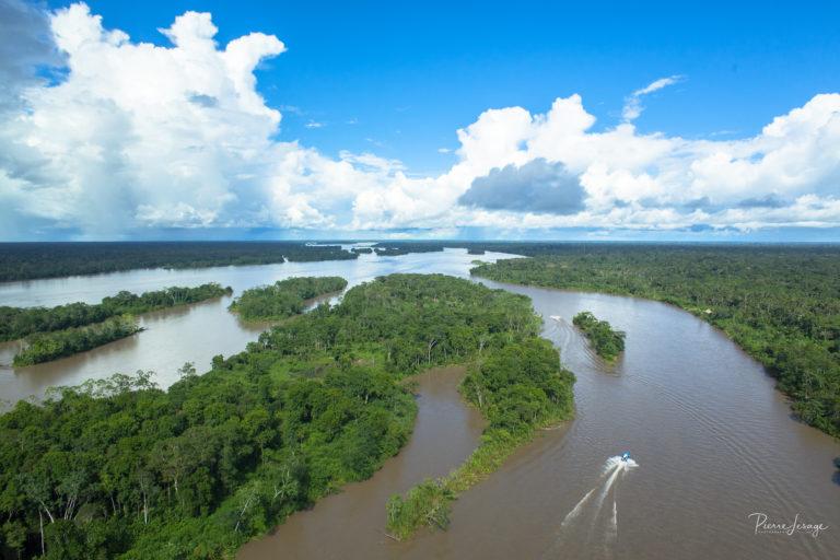 La cuenca del río Napo es uno de los sitios más diversos en cuanto a especies de agua dulce. Foto: Pierre Lesage.