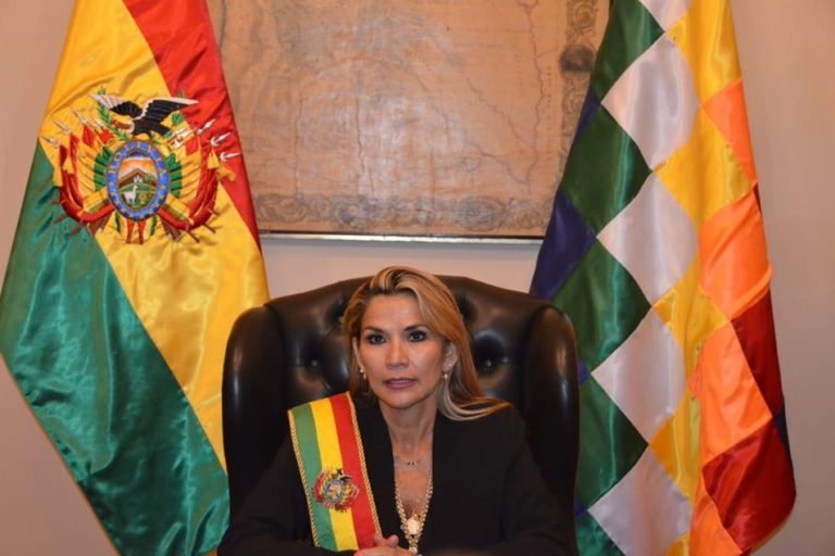 El gobierno de Jeanine Añez emitió la norma que facilita el ingreso de transgénicos en plena pandemia. Foto: Agencia Andina.