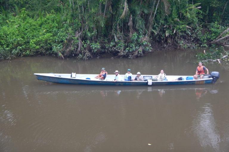 Conservación de manatí. El muestreo se hizo en un recorrido de 580 km. Foto: WCS Ecuador.