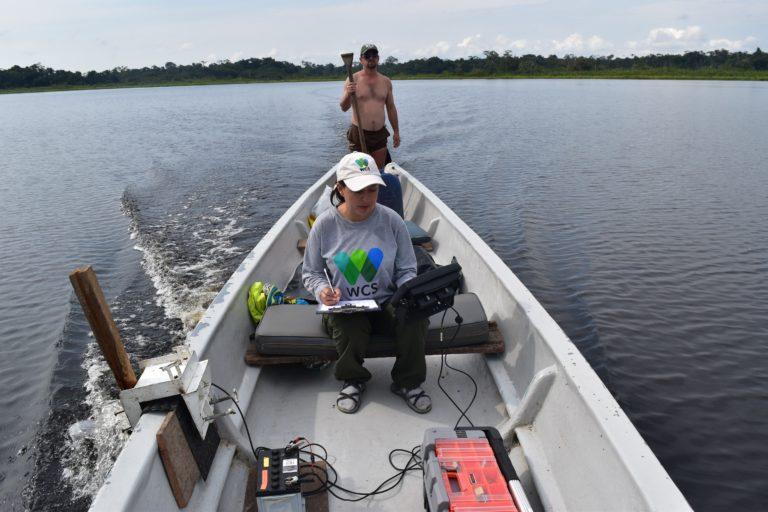 Conservación de manatí. El sonar de barrido lateral mostró una efectividad de 80 % en detectar al manatí. Foto: WCS Ecuador.