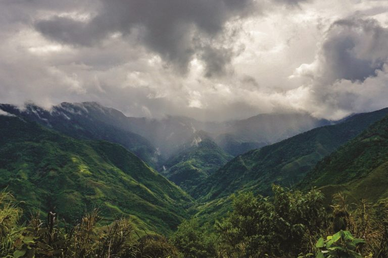 Aún queda mucho por investigar en los bosques montanos de Carpish. Foto: NCI.
