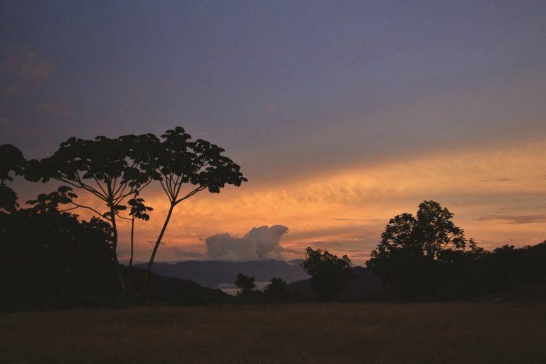 La deforestación es una de las principales amenazas de este paisaje único. Foto: NCI.