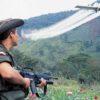 El gobierno colombiano ha utilizado la fumigación con glifosato principalmente para erradicar los cultivos de coca. Foto: archivo/Ministerio de Defensa.