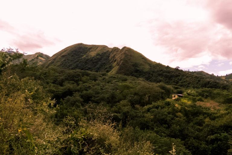 Conservación de aves. Panorámica de la Reserva de Yunguilla, que en la actualidad cuenta con 195 hectáreas. Foto: Fundación Jocotoco.