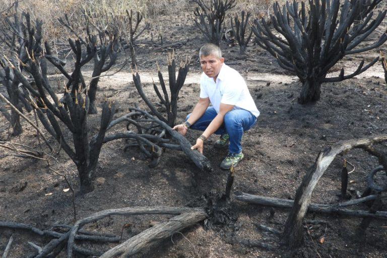 Incendios en la Amazonía. Así quedó parte del terreno quemado. Foto: Cormacarena.