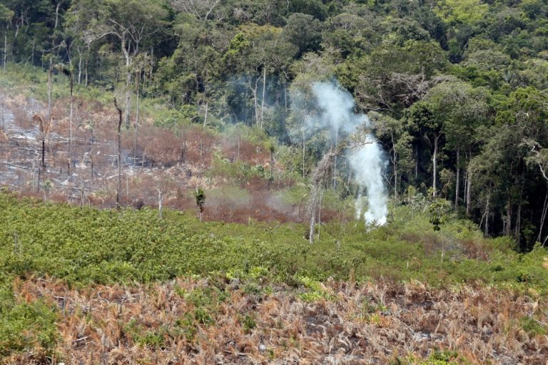 Incendios en la Amazonía. Aún se ve humo saliendo de la tierra incendiada. Foto: Ministerio de Ambiente.