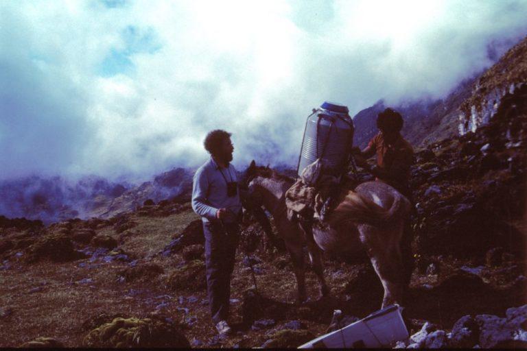 La expedición de 1985 llegó a Milpo, en Huánuco, donde se encontró el primer ejemplar de Scytalopus frankeae. Foto: Ken Rosenberg / American Ornithological Society.