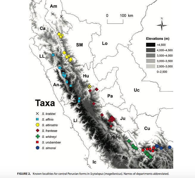 Mapa de distribución en Perú de las especies de tapaculos. Fuente: The Auk.