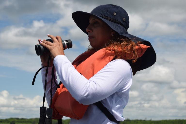 Delfín costero. A la bióloga Yurasi Briceño le preocupa cómo la crisis social y económica venezolana está influyendo en la pesca incidental y cacería directa del delfín costero. Foto: Yurasi Briceño.