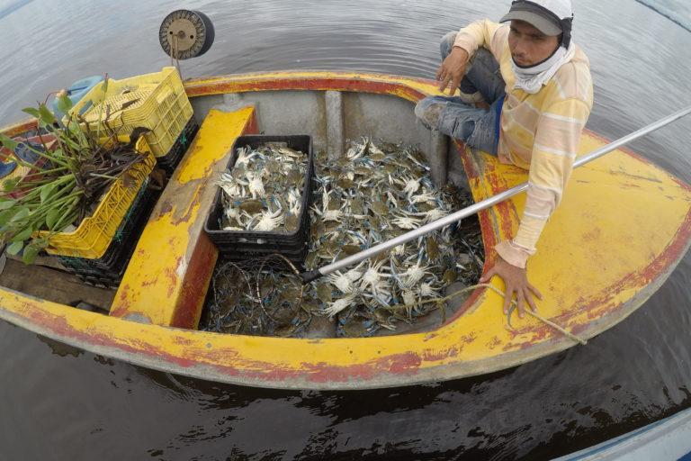 Delfín costero. Pescadores del lago de Maracaibo. Foto: Yurasi Briceño.