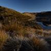 """Restauración de páramos. Paisaje en el Parque Nacional Natural Los Nevados, entre los departamentos de Quindío, Risaralda, Caldas y Tolima. Foto: Mauricio """"Pato"""" Salcedo - WCS Colombia."""