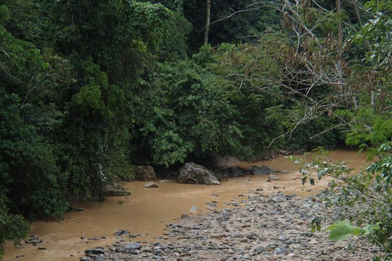 Minería de río. El río Yutsupino estaría contaminado por la actividad minera y otras actividades humanas. Foto: Cortesía para GK.