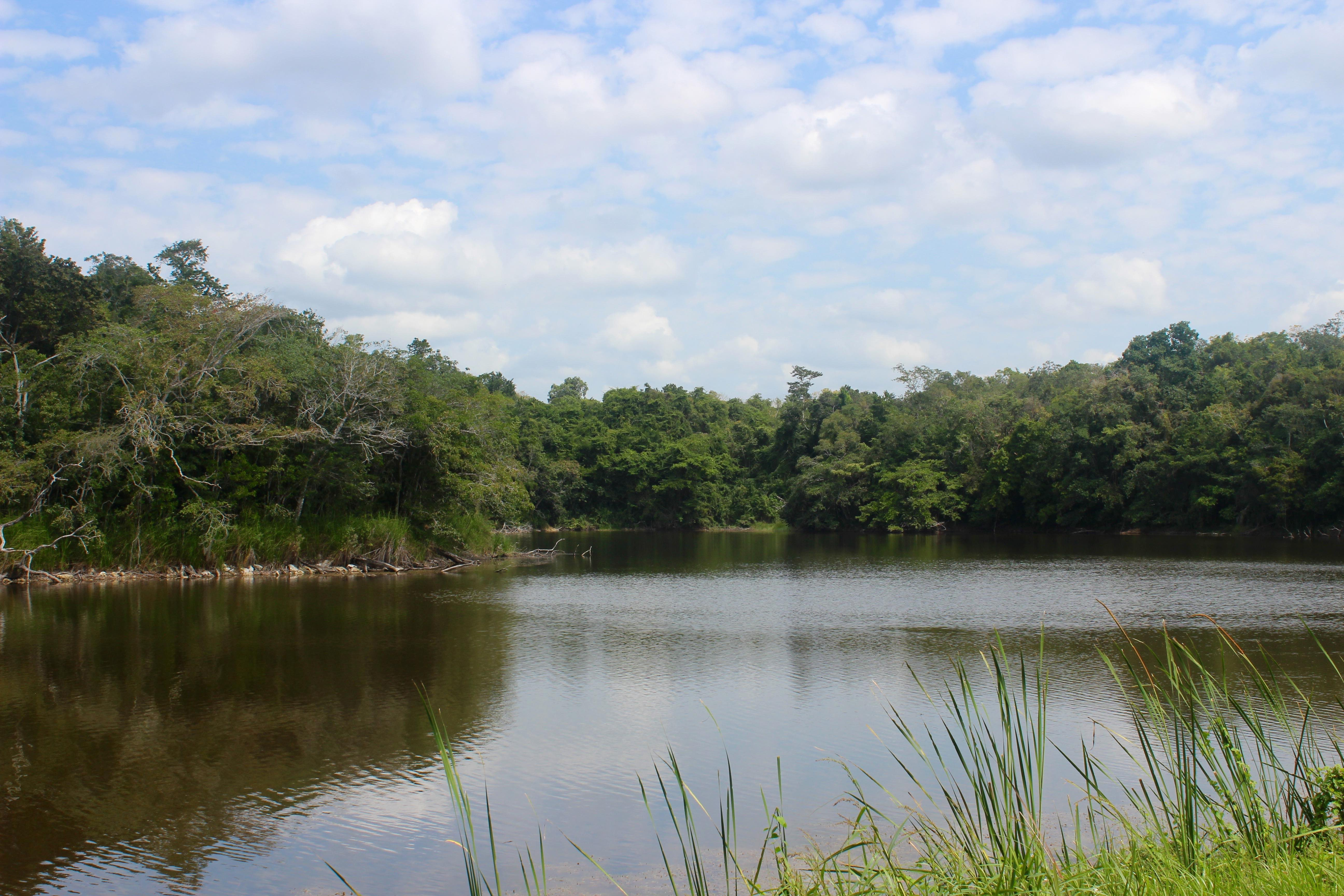 Laguna de Chakanbakán, Ejido Laguna OM