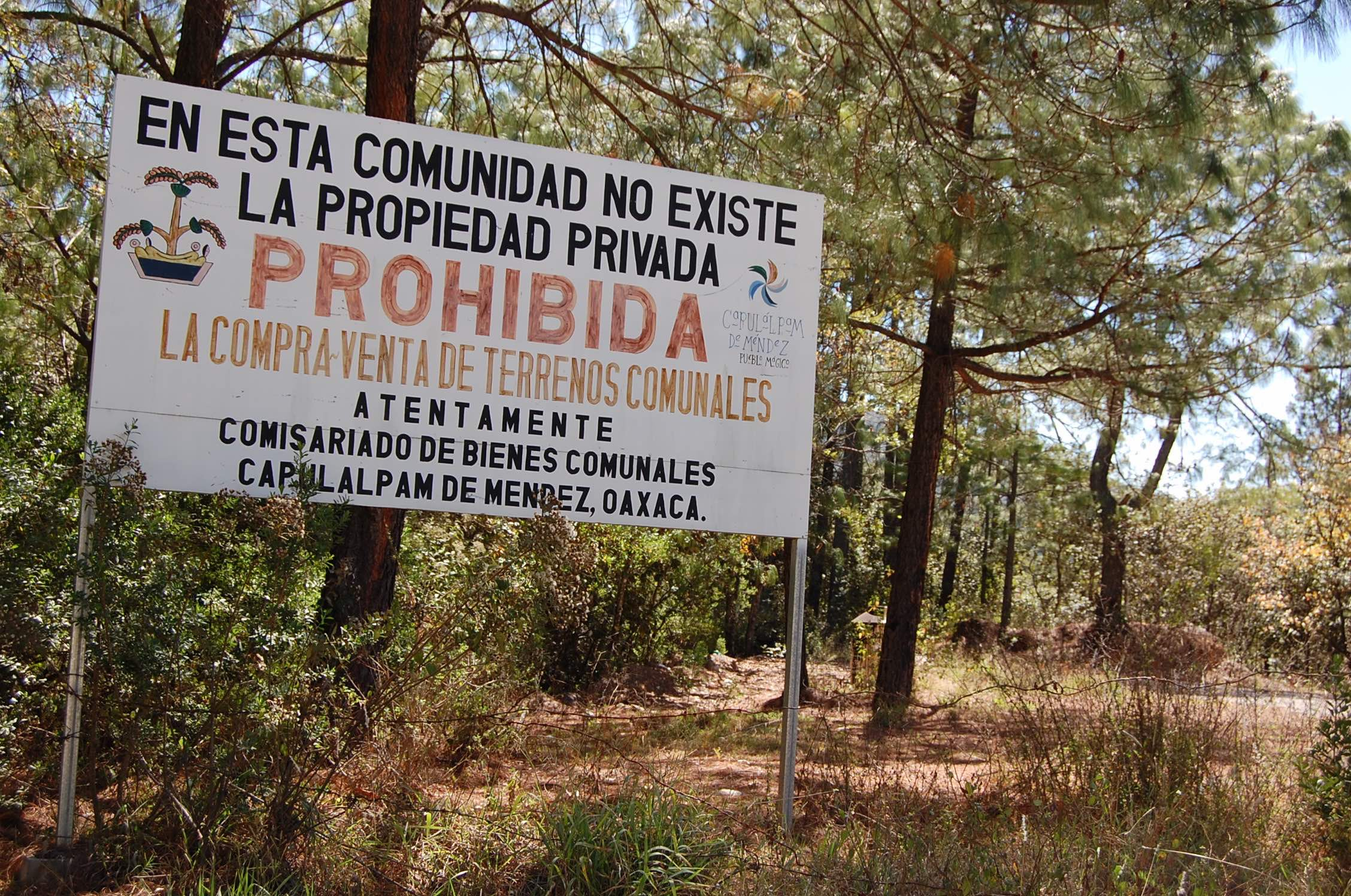 Capulálpam, comunidad forestal en Oaxaca, México