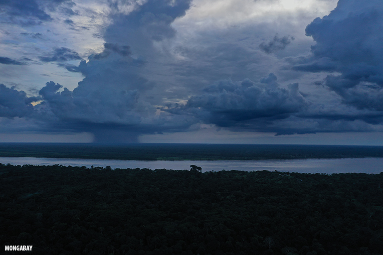 Lluvias en la Amazonía colombiana. Foto: Rhett Butler.