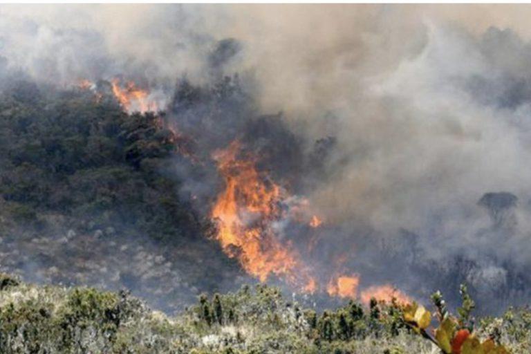 Calidad del aire y coronavirus. Incendios en estribaciones de la Sierra Nevada ponen en peligro las cuencas de 7 ríos, de los cuales 4 surten los acueductos de Pueblo Viejo, Ciénaga y Santa Marta. Foto: Procuraduría de Colombia.