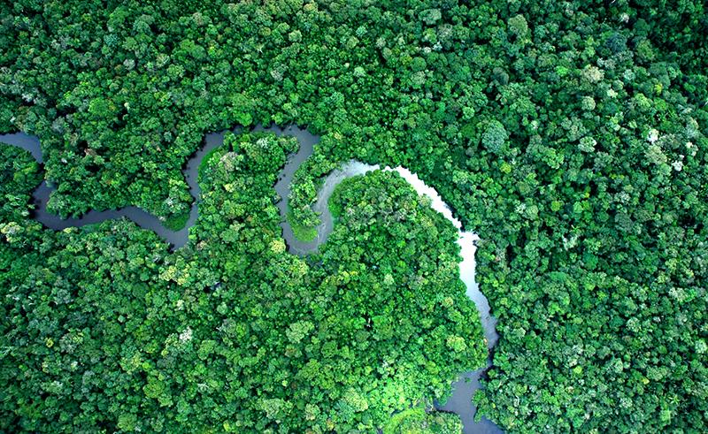 covid-19 indígenas brasil