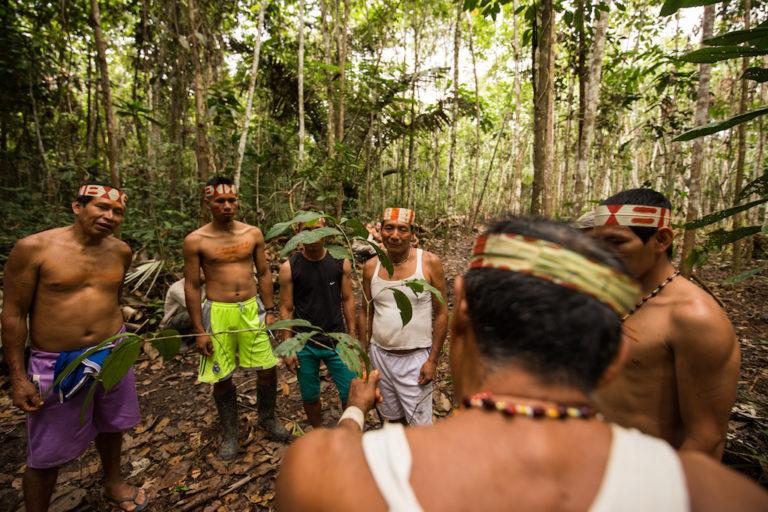 PIACI Alrededor de 200 indígenas del pueblo matsés retornarán desde Iquitos a su territorio ancestral. Foto: Tui Anandi y Mike van Kruchten / Xapiri.
