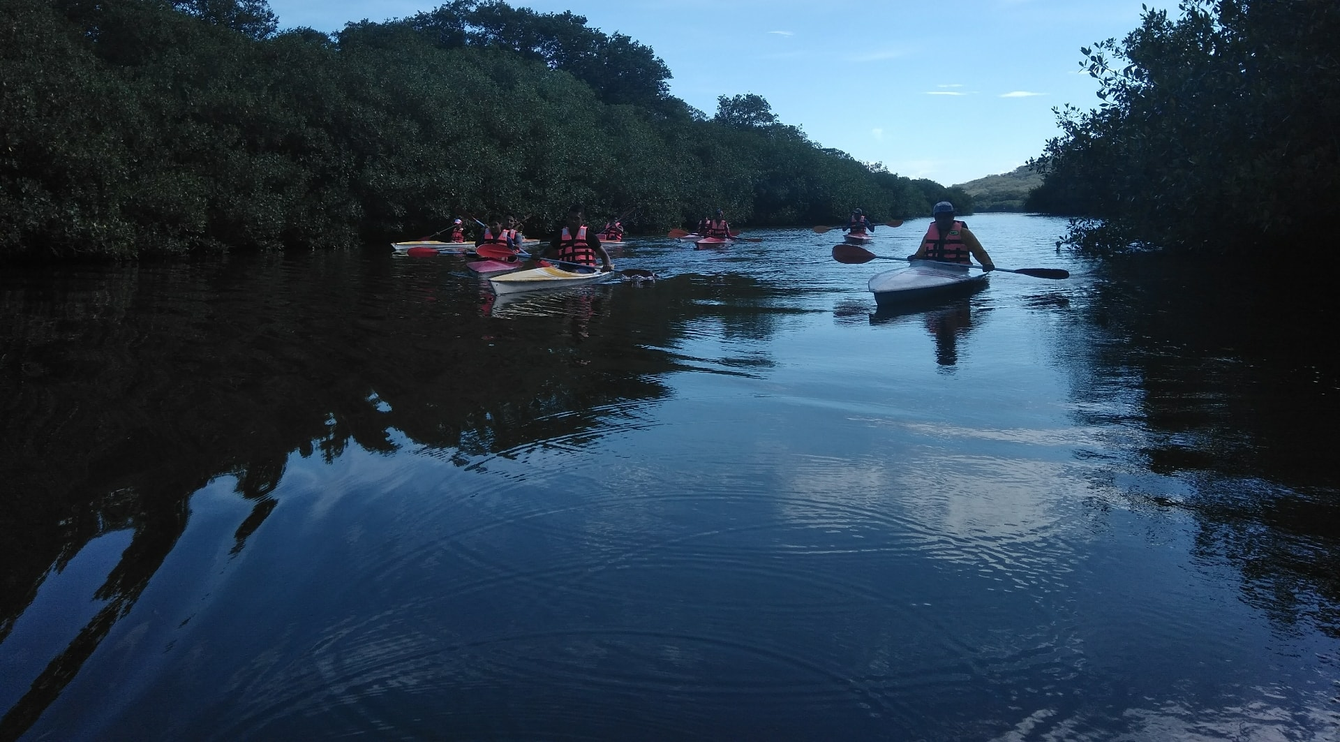 Humedales en La Mancha, Veracruz