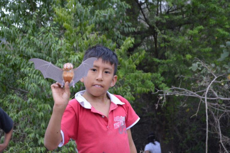 Conservación de murciélagos en Ecuador. Uno de los niños de la comunidad de Cauchiche en los talleres de educación. Foto: Cortesía.