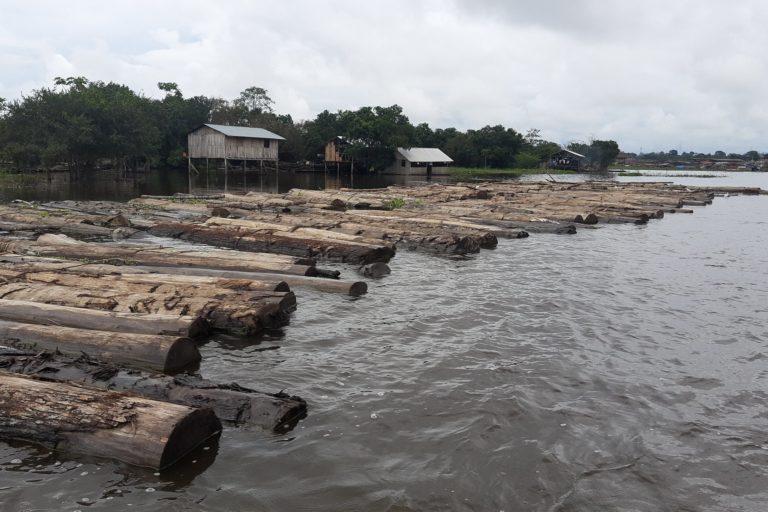 El transporte de madera ilegal en Ucayali se ha presentado aún durante la inmovilización por la emergencia por COVID 19. Foto: FEMA Ucayali.