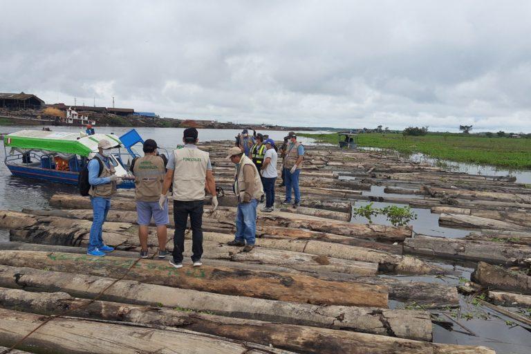Madera que no contaba con la documentación para su traslado ha sido decomisada en Ucayali. Foto: FEMA Ucayali.