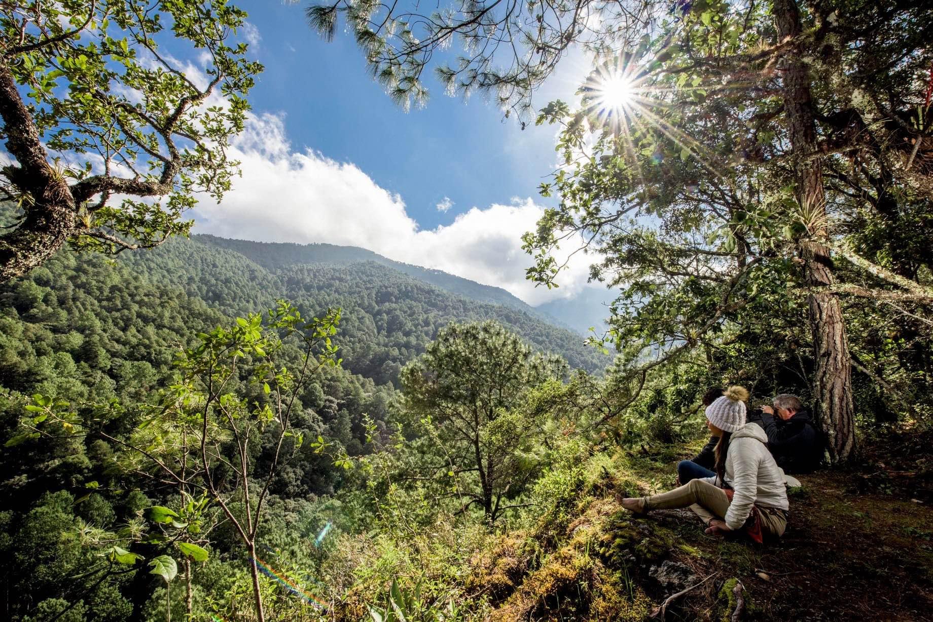 Ecoturísmo en bosques comunitarios