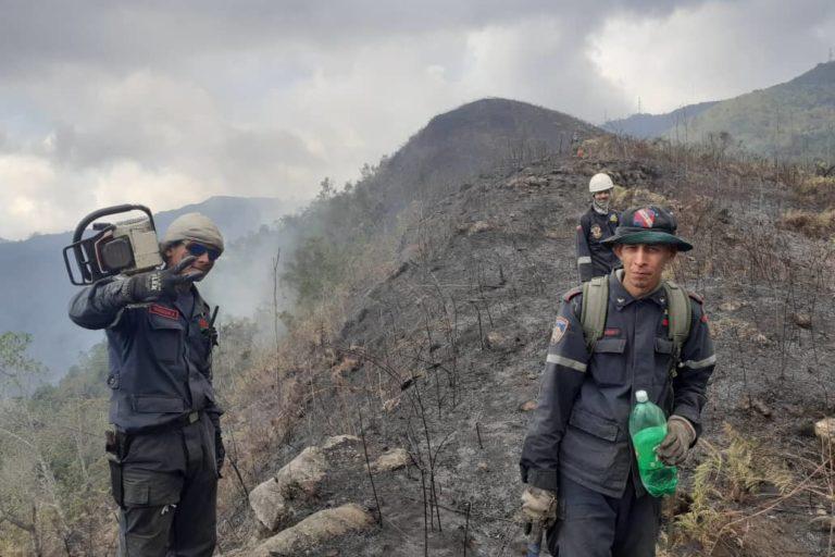Incendios en Venezuela. Bomberos combatiendo fuego en montañas de La Colonia Tovar. Foto: Inparques.